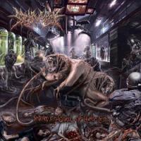 SickMorgue-Festering In A Cesspool Of Human Flesh