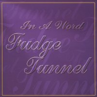 Fudge Tunnel-In A Word