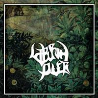 Laburnum Diver-The Hard Journey Back