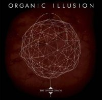 Organic Illusion-The Linear Chaos
