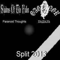Shadows Of The Fallen / Gagtungr-Split