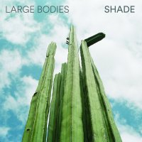 Large Bodies-Shade