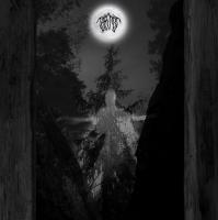 Taatsi-Amidst The Trees