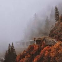 Grimmasque-Autumn\'s Passage