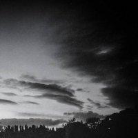 Zoltan Freitag-22nd