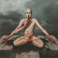 Meshuggah-obZen
