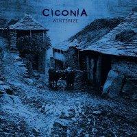 Ciconia-Winterize