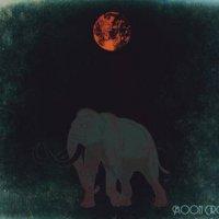 Moon Circle-Moon Circle