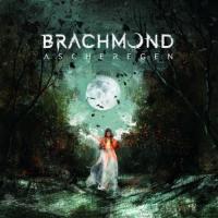 Brachmond-Ascheregen