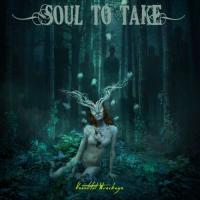 Soul to Take-Beautiful Wreckage