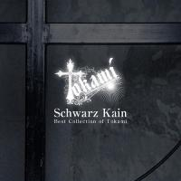 Tokami-Schwarz Kain