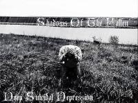 Shadows Of The Fallen-Deep Suicidal Depression