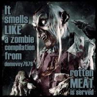 Various Artists-It Smells Like A Zombie