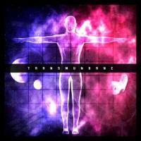 Transmundane-Shadow of a Vision