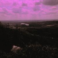 Misertus-Daydream