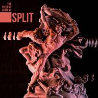 The Present Moment-Split