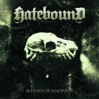 Hatebound - Shades of Madness mp3