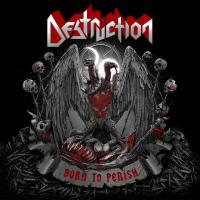 Destruction - Born to Perish flac cd cover flac