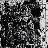 Rotten Wolf-DEATH ✞ NOISE