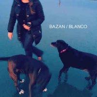 David Bazan-Blanco