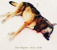 Joy-Depart This Life