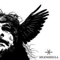 Splendidula-Somnus