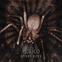 Hocico-Spider Bites