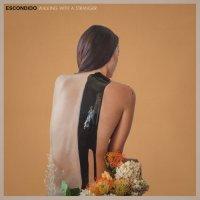 Escondido-Walking With A Stranger