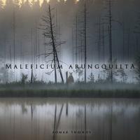 Maleficium Arungquilta-Ломая Тишину