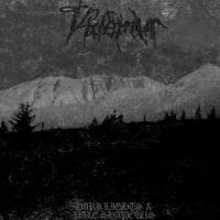 Videmur-Dark Lights & Pale Shadows