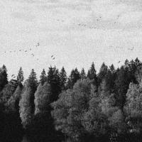 October Falls-A Collapse Of Faith