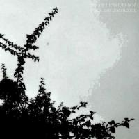 The Air Turned To Acid-Black Zen Instruction