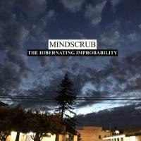 Mindscrub-The Hibernating Improbability