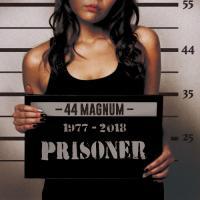 44 Magnum-Prisoner
