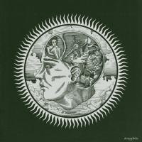 Slow Green Thing-Amygdala