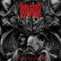 Infected Sphere-Abyss Ov Flesh
