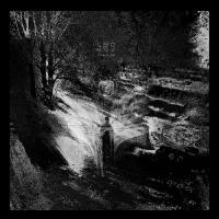 Leonov-Wake