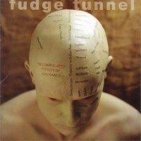 Fudge Tunnel-The Complicated Futility Of Ignorance
