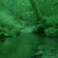 Kyomdarak-月の光と幻想