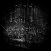 Final Thoughts / Endless Sorrow / Lost Inside-From Our Veins (Split)