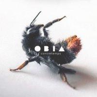 Obia-Contretemps