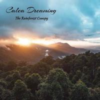 Calea Dreaming-The Rainforest Canopy