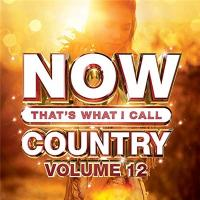 VA-NOW That\'s What I Call Country Vol. 12