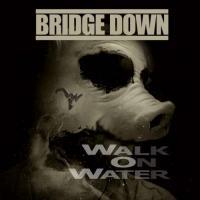 Bridge Down-Walk on Water