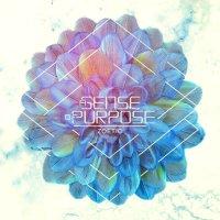 A Sense Of Purpose-Zoetic