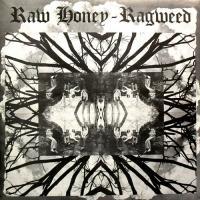 Raw Honey-Ragweed