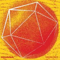 Iguana-Translational Symmetry