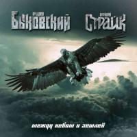 Быковский / Страйк-Между небом и землей