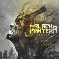 Black Pantera-Agressão