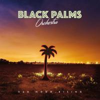 Black Palms Orchestra-Sad Moon Rising